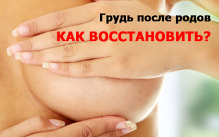 Вернуть упругость груди, как до беременности: советы, методики, рекомендации