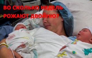 Во сколько недель рождаются двойняшки