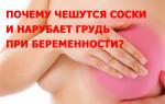 Почему чешутся соски и нагрубает грудь при беременности?
