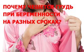 Почему чешется грудь у женщин при беременности на разных сроках: причины, сроки