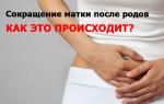 Как долго восстанавливается шейка матки после родов?